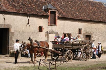 Ferme du Château à St Fargeau